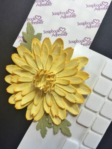 CEmberson - Flower Box 8