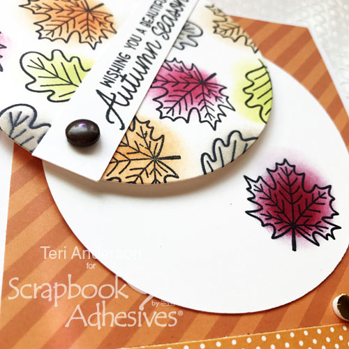 Interactive Peek-a-Boo Card Tutorial by Teri Anderson for Scrapbook Adhesives by 3L