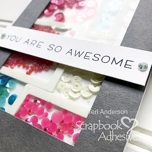 Divided Shaker Card Tutorial by Teri Anderson for Scrapbook Adhesives by3L