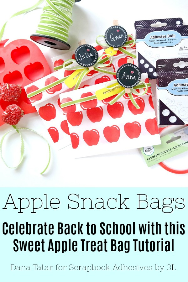 Back to School Apple Snack Bag Tutorial