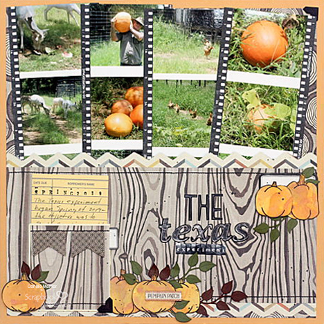 Pumpkin Patch Pocket Page Tutorial by Connie Mercer for Scrapbook Adhesives by 3L
