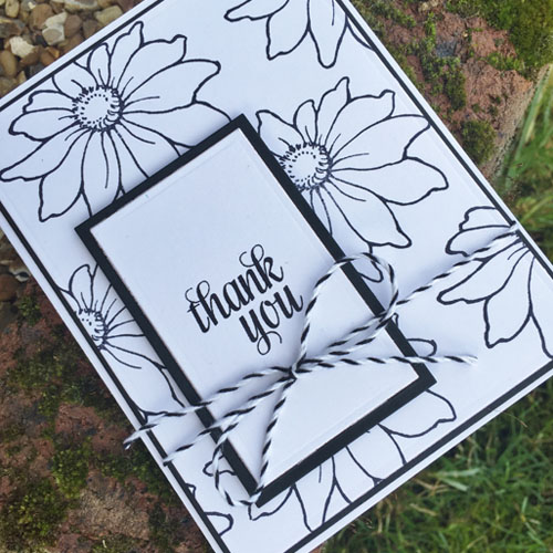 Daisy Mix Thank You Card by Christine Emberson